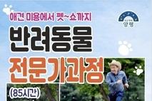 양평군 '반려동물 전문가' 육성한다…신중년 대상