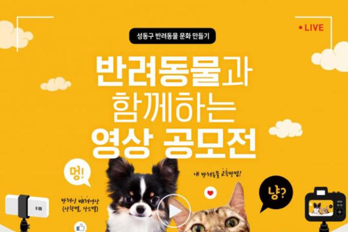 성동구, 반려동물 영상 공모전 개최